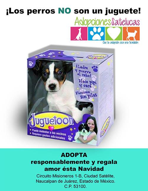 adopciones_satelucas