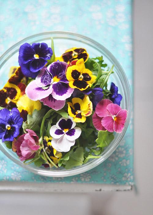 Flores interiores