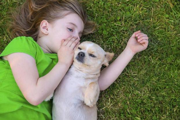 mascota-salud-ninos-2